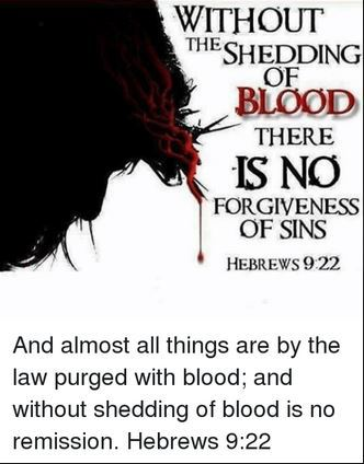 without-the-shedding-of-blood-there-is-no-forgiveness-of-sin-hebrews-9-22